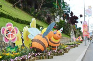 festival hoa da lat 2013 - 2