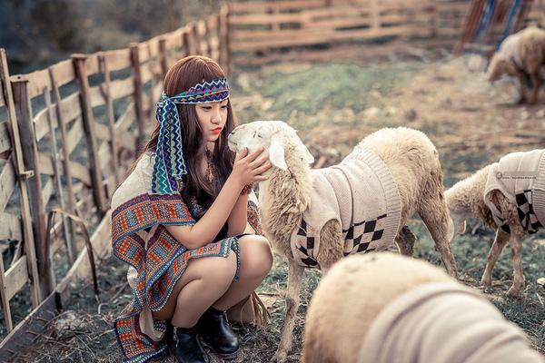 Việc trở thành du mục chăn cừu sẽ không còn là mơ ước của bạn nữa mà đó là hiện thực.