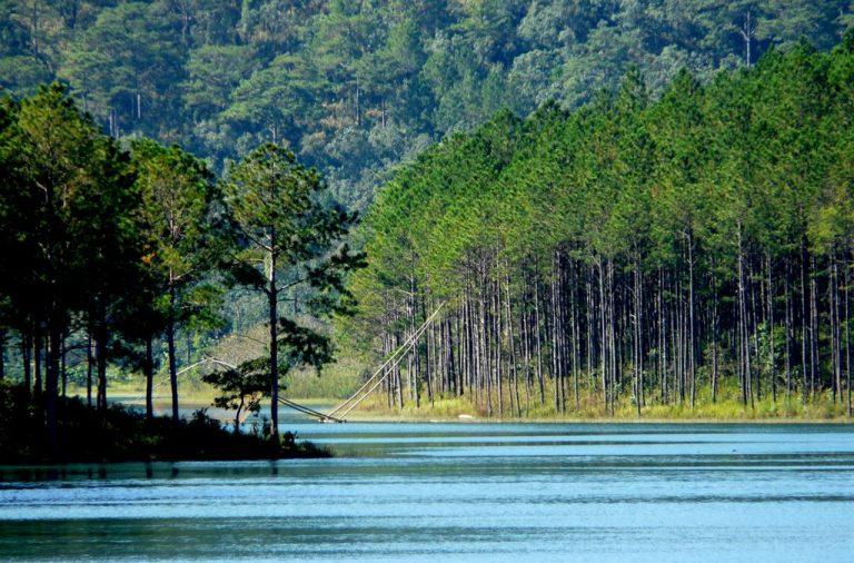 Nước hồ Tuyền Lâm xanh như màu ngọc bích giúp bạn có được cảm giác thư thái, dễ chịu.