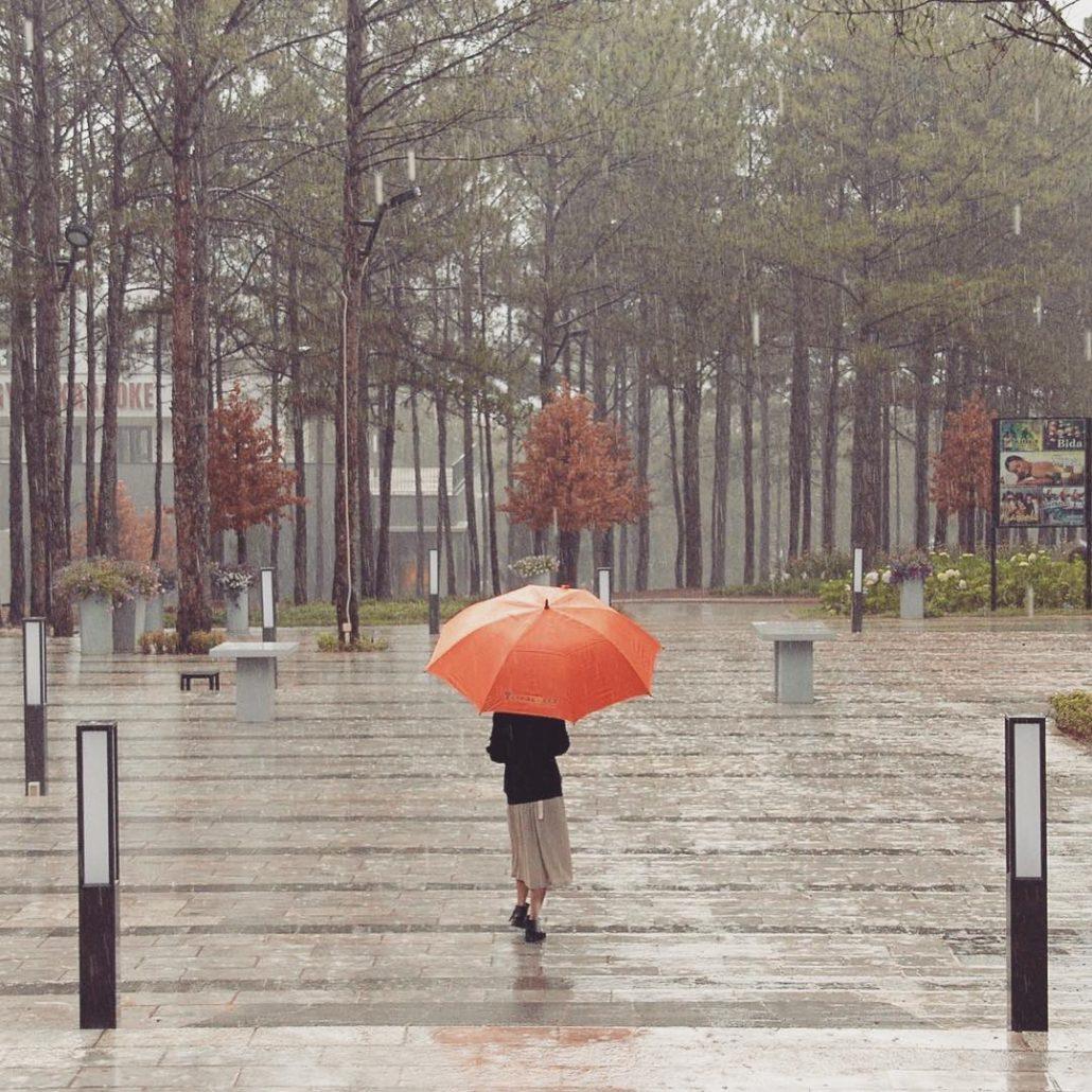 Đà Lạt mùa mưa tháng 8