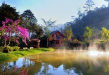 Ma rừng lữ quán là điểm khám phá tuyệt đẹp ở Đà Lạt.