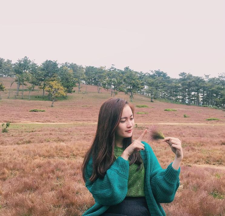 Đồi cỏ hồng thơ mộng