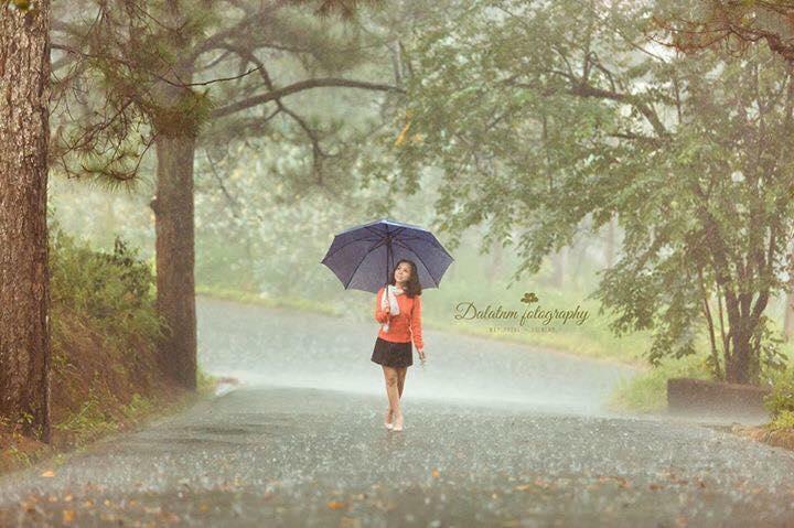 đà-lạt-mùa-mưa